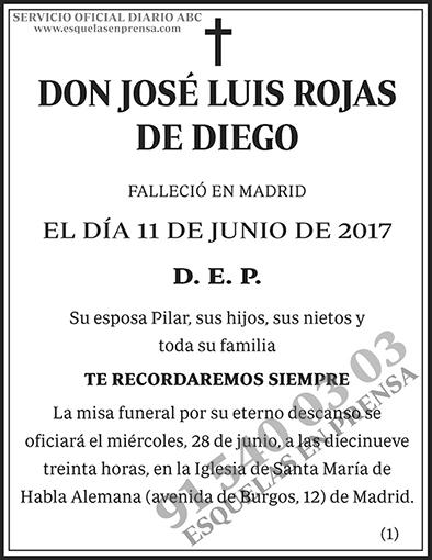 José Luis Rojas de Diego